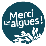 ©Merci Les Algues !